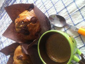 Muffins aux deux farines équitables pépites de chocolat noir maison et à la Stévia de Lunel .