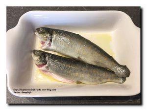 Truite au four en écailles d'amandes sauce velours de poisson