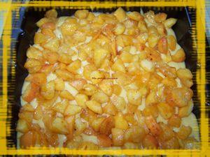 Gateau crumble aux abricots