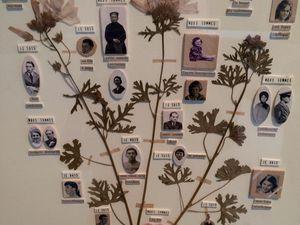 Exposition Secrets de famille de Maïssa Toulet