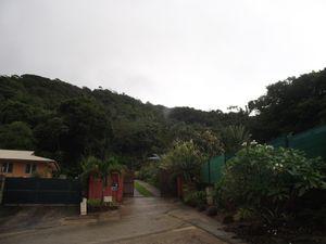Saga guyanaise.... Journal de voyage de juin 2014.... (2ème semaine)