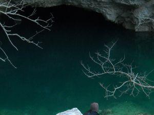 Pétrarque à Fontaine de Vaucluse