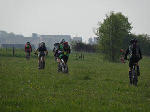 Début de balade entre forêt et champs.