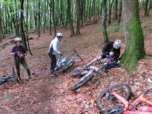 Montée vers le col de Stiefelsberg : beau temps, jolie forêt, pas de difficulté.