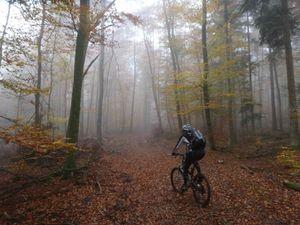 Le début de la montée vers le Schlossberg se fait dans le brouillard, mais le soleil n'est pas loin.