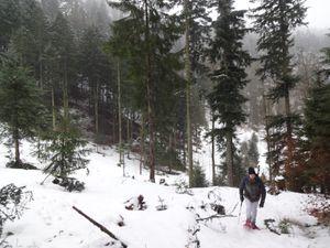 Il tombe une petite bruine neigeuse lorsque nous repartons. Nous passons à côté du lac Nonnenmattweiher dominé par une sacrée paroi rocheuse.