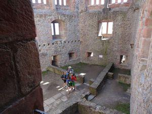 Nous arrivons un peu avant midi au château. Il fait un temps magnifique et l'endroit est accueillant : nous décidons de nous arrêter là pour le repas.