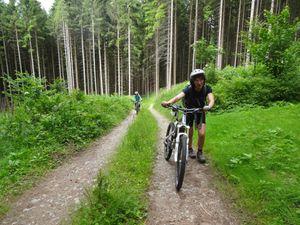 Le col de Schlingoutte, ça n'a l'air de rien comme ça, mais c'est une sacrée montée. Personne ne parvient à rester sur le vélo.