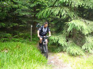 Une longue montée sur piste forestière, un petit passage hors piste. Et hop, au détour d'un sapin, nous atteignons le sommet et la tour Julius.