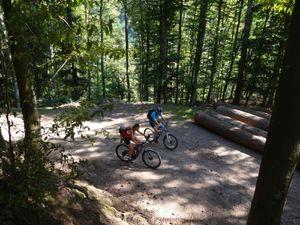 Puis c'est la montée au Welschbruch, principalement sur sentier forestier ombragé, mais pas que.