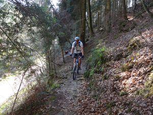 Dans le fond de la vallée, un joli single forestier longe le Baerenbach.