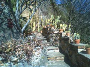 Quelques souvenirs de la visite du Jardin Méditerranéen en février 2010 (images personnelles)