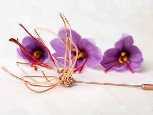 Les sublissimes fleurs de Crocus créées/cultivées au Domaine de Gauville Crédit Photo Domaine de Gauville