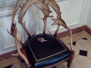 [Insolite] Déambulation mystérieuse au Musée de la chasse (Paris)