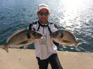 Début de saison 2015 de pêche à la daurade royale en méditerranée