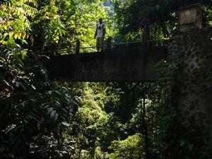 Les cascades de Senaru
