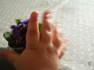 ... pour toi ces quelques violettes cueillies dans le jardin ...