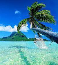 Des îles et des palmiers&#x3B; le rêve , les yeux grands ouverts, quoi