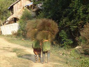 Nong Kiaw et Muang Ngoi