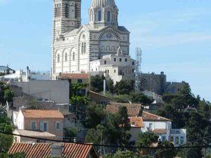 Provence : l'important pois chiche