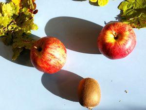 Atelier langage autour des fruits d'automne chez Géraldine B