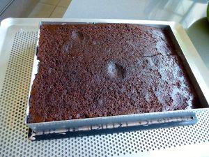 Mousse Baileys sur biscuit fondant au chocolat