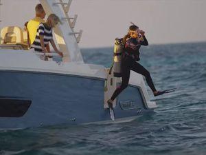 VIDEO - 2.51 minutes de bonheur à bord d'un Boston Whaler 420 Outrage