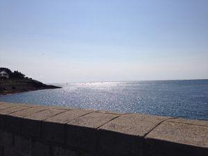 Balade au vieux port à Port Navalo