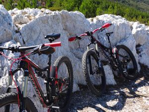 Comparatif entre un FAT &quot&#x3B; Fat boy Specialized&quot&#x3B; et un 27.5+ Stumpjumper Specialized