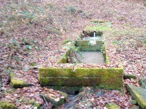 Le long de la fontaine – à LE RAVAL 88240. Sylviane CharpentierPhotos