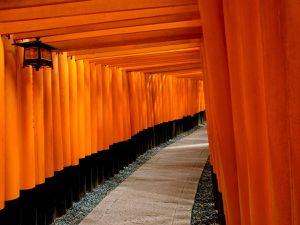 Kyôto : Le sanctuaire aux 10000 Torii, Fushimi-Inari-Taisha 伏見稲荷大社