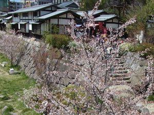 Préf. de Nagano : Le château de Matsumoto 松本城 sur fond d'Alpes Japonaises