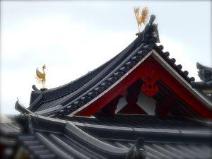 Les phénix sur le toit