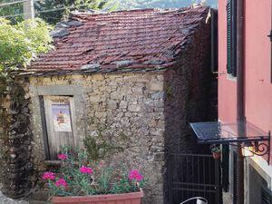 Montereggio, village perché de la Lunigiana ... des maisons de pierres, des bois de chataigniers