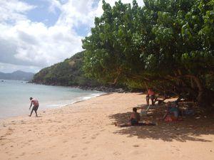 Le pique nique sur une belle plage de sable blanc à l'ombre des badamiers
