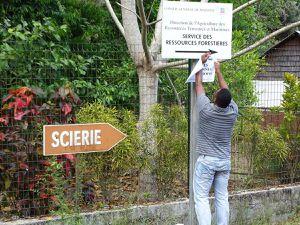 Le site de la Réserve Forestière.