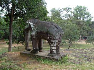 Les éléphants gardent les angles des deux plateformes.