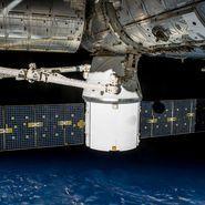 Il vettore commerciale Dragon della SpaceX