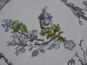 Petit nichoir et oisillon sur des branches de chèvrefeuille ...