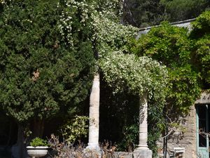 Jardins à l'Italienne avec sa roseraie et ses bassins...