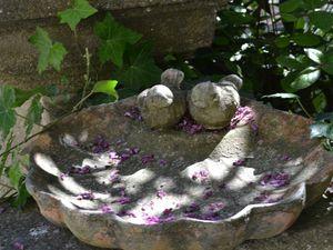 Merveilleux jardin...