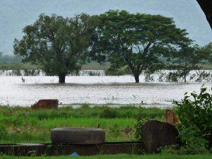 Rizières et inondations