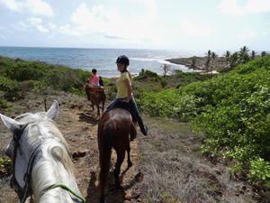 Balade à cheval avec Cécile et Marie !