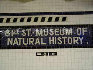 Museum d'histoire naturelle, NYC