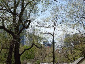 New-York-  7 jours en avril 2016