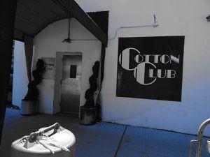 Brunch au Cotton club à Harlem: de la soul et du gospel de pro