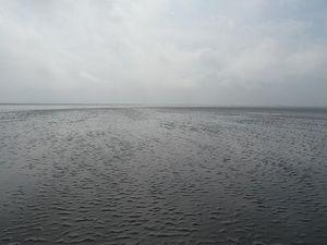 Grande traversée de la baie du Mont saint Michel, à pieds avec un guide