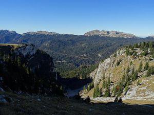 Les pyrénéens dans les Alpes: des chamoix en chartreuse