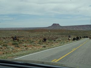 Valley of the gods, Moki dugway, Gooseneck state park, Muley point, Needles, Wilson arch
