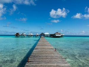 Un petit coin de paradis !